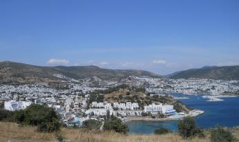 Bodrum Holiday Resort & SPA: цветы